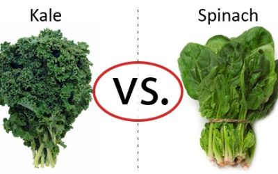 Which is Healthier … Kale or Spinach?