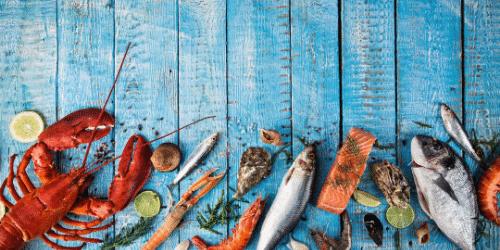 Seafood on Blue Wood